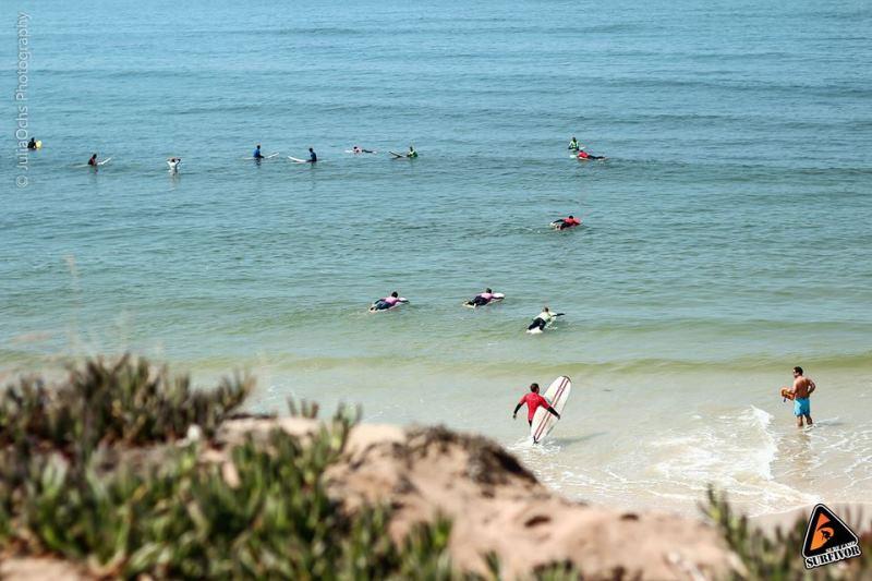 easy-surf