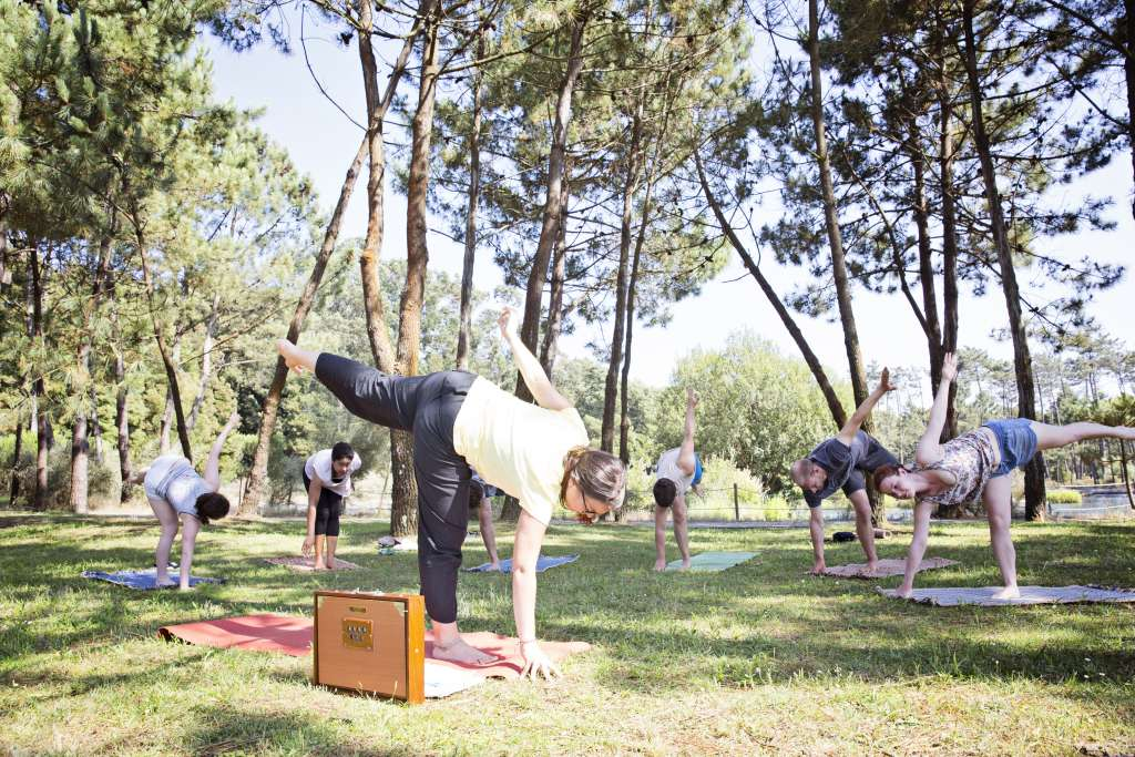 Yoga Class Park Stretch Forest