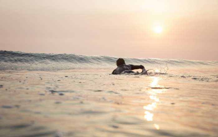 Paddle Water Surfer Sunset
