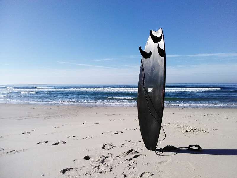 Bruno Surfboard